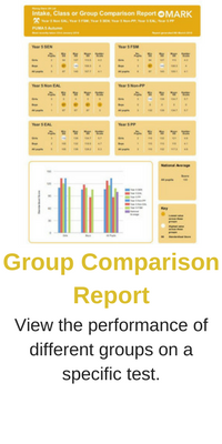 Group Comparison Report
