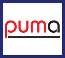 PUMA Maths Tests For Pupil Assessment - Rising Stars